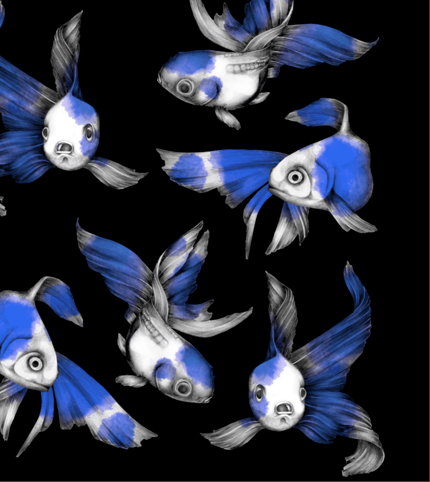 FISUT /blue (jersey) -